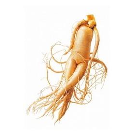 Eleuterokok (čertův kořen) 50g