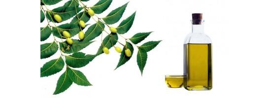 Nimbový olej