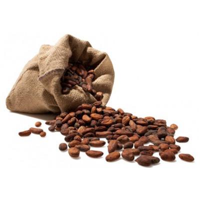 Kakaové boby nepražené 500 g Čokoládovna Troubelice