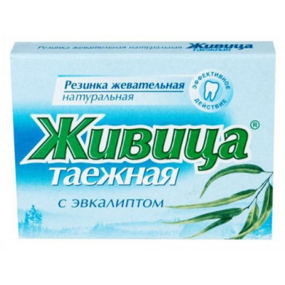 Sibiřská žvýkací pryskyřice s eukalyptem 5 ks