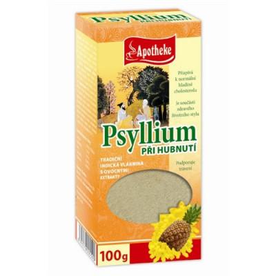 Psyllium s ananasem 100g hubnoucí
