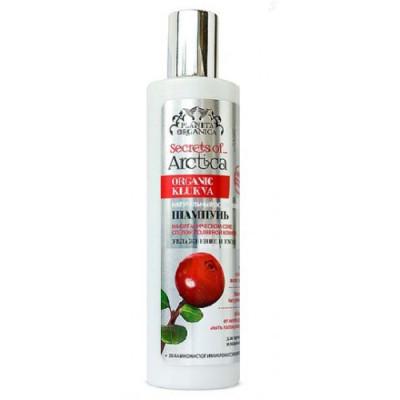 Šampon s klikvou pro mastné vlasy Arctica Planeta Organica