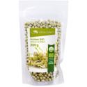 Hrášek BIO - semena na klíčení 200 g Zdravý den
