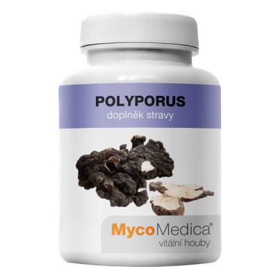 Polyporus extrakt 90 kapslí MycoMedica