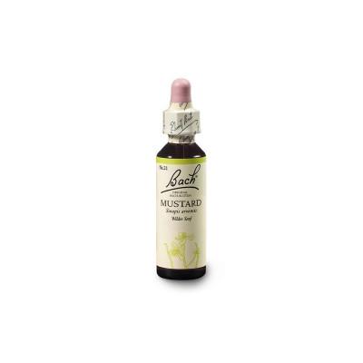 Mustard 20ml Bachovky č.21