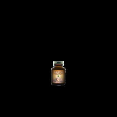 Earth Broth™ prášek 20 g HealthForce