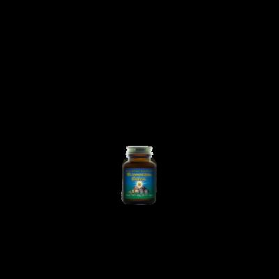 Vitamineral Green™ prášek 20 g HealthForce