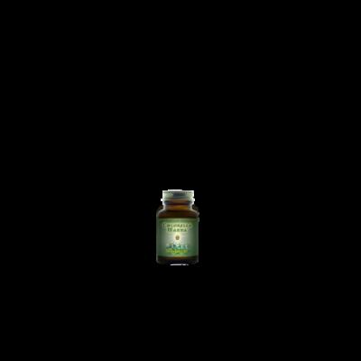 Chlorella Manna™ tablety 40 tablet HealthForce