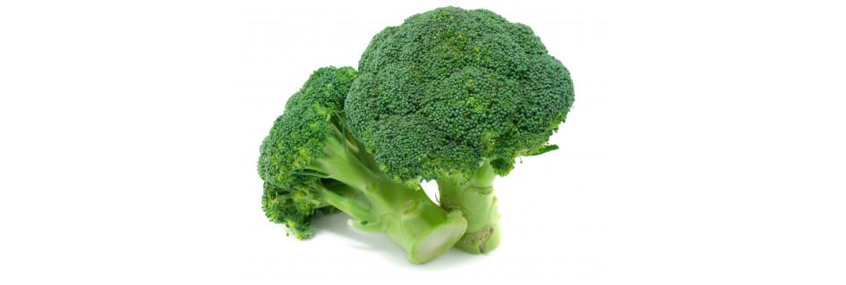 Brokolicový olej
