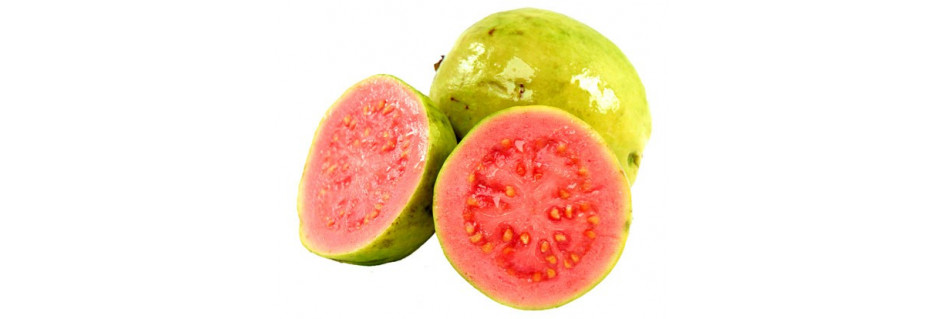 Guava olej