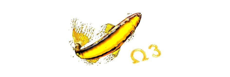 Rybí olej