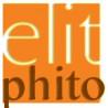 Elit phito